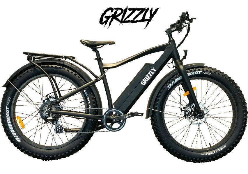 Ride Bike Style Vintage E-Bike Grizzly