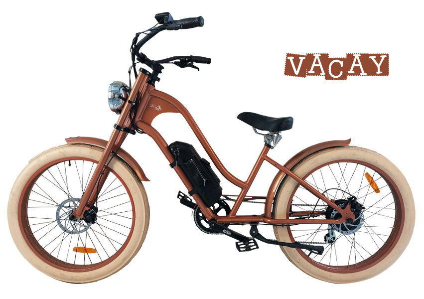 Ride Bike Style Vintage E-Bike Vacay
