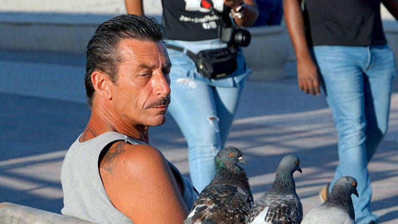 man and pigeons at the beach of Hollywood Beach, FLorida